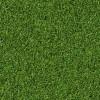 landscaping-toronto-back.jpg